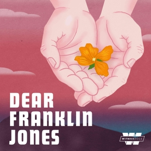 Dear Franklin Jones by Stitcher & Jonathan Hirsch