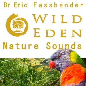 Wild Eden Nature Sounds by Dr Eric Fassbender by Wild Eden Nature Sounds by Dr Eric Fassbender