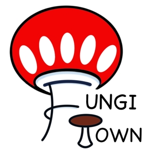 Fungi Town by Jen Parrilli