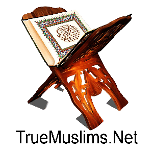Mp3 Quran In English Language by TrueMuslims.net