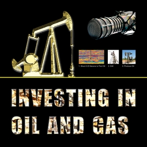Investing in Oil and Gas by Mike May