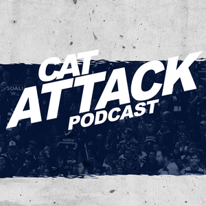 Cat Attack by K rock Football