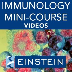 Immunology Course in South Africa by Albert Einstein College of Medicine