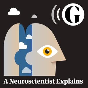 A Neuroscientist Explains by The Guardian
