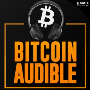 Bitcoin Audible by Guy Swann