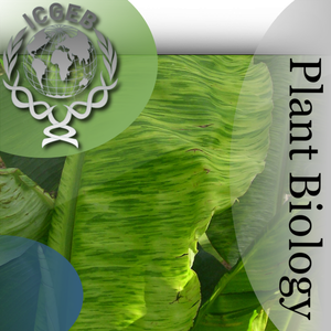 Plant Biology by ICGEB - Trieste, Italy