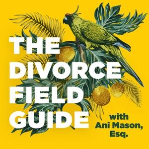 The Divorce Field Guide by Ani Mason, Esq.