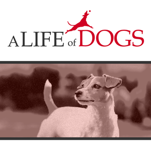 A Life of Dogs