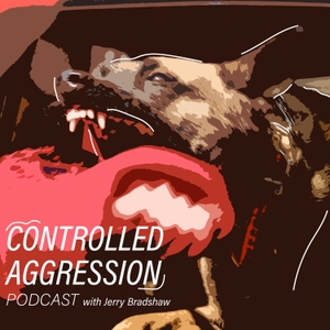 Controlled Aggression by Jerry Bradshaw