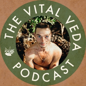 The Vital Veda Podcast: Ayurveda   Holistic Health   Cosmic and Natural Law by Dylan Smith: Ayurvedic Practitioner, Holistic Health Educator, Conscious Entrepreneur