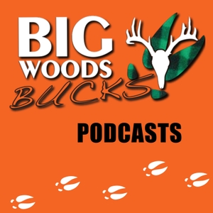 Big Woods Bucks - Deer Hunting -Education & Entertainment by Hal Blood