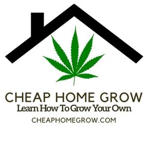 Cheap Home Grow - Learn How To Grow Cannabis Indoors Podcast by Cheap Home Grow