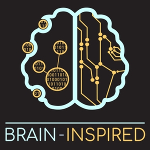 Brain Inspired by Paul Middlebrooks