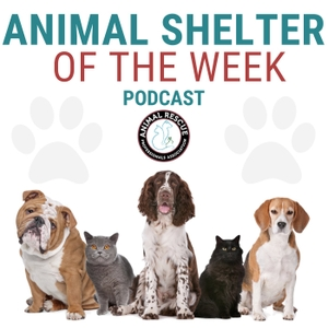 Animal Shelter of the Week by The Animal Rescue Professionals Association