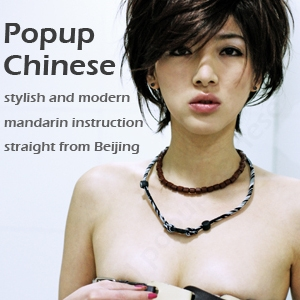 Popup Cantonese by Popup Cantonese