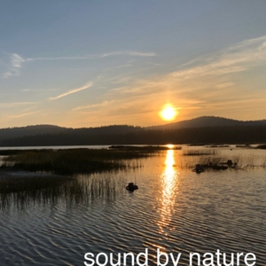 Sound By Nature by Sound By Nature