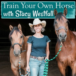 Train Your Own Horse with Stacy Westfall by Stacy Westfall