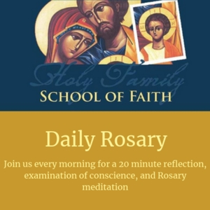 Daily Rosary Meditations by Dr. Mike Scherschligt 980628