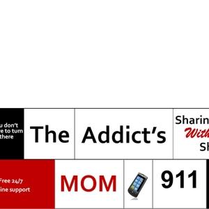 The Addict's Mom 911 by Barbara Theodosiou