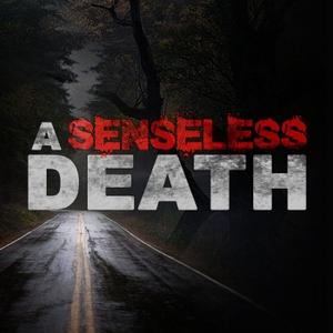 A Senseless Death by A Senseless Death