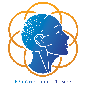 Psychedelic Times Podcast by Joe Mattia