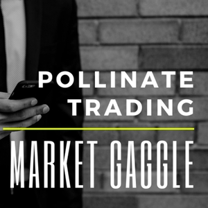 The Market Gaggle by Pollinate Trading by Chris