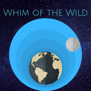Whim of the Wild by Nick MacDonald