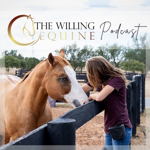 The Willing Equine by The Willing Equine