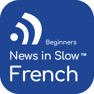French for Beginners by Linguistica 360