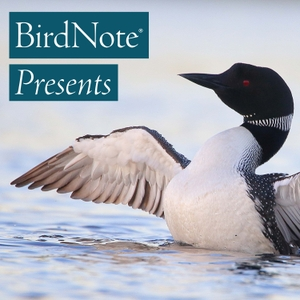 BirdNote Presents by BirdNote