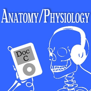 MOOC Podcast: Intro to Anatomy and Physiology with Doc C by Dr. Gerald Cizadlo