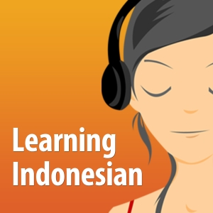 Learning Indonesian - The fun and easy self-paced course in Bahasa Indonesia, the Indonesian Language by The Learning Indonesian Team