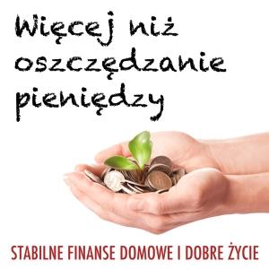 Więcej niż oszczędzanie pieniędzy (WNOP): Finanse osobiste | Zarabianie | Inwestowanie | Przedsiębiorczość by Michał Szafrański