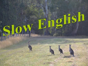 Slow English by Rob McCormack