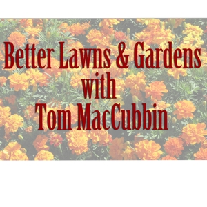Better Lawns & Gardens with Tom MacCubbin by Tom MacCubbin