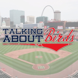 Talking About Birds: A St. Louis Cardinals Podcast by Nate Heininger and Ben Simorka