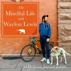 Elephant Journal: The Mindful Life with Waylon by Waylon H. Lewis
