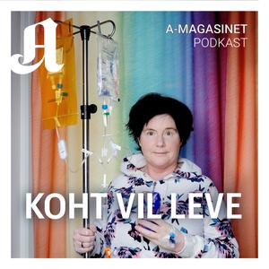 Koht vil leve by Aftenposten