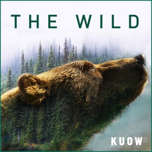 The Wild by KUOW