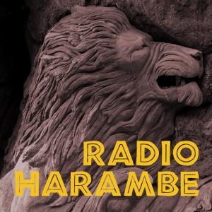 Radio Harambe by jamboeveryone.com