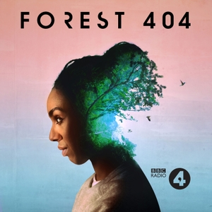 Forest 404 by BBC Radio 4