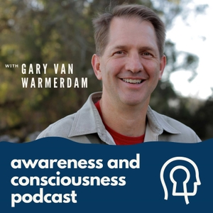 Awareness and Consciousness by Gary van Warmerdam