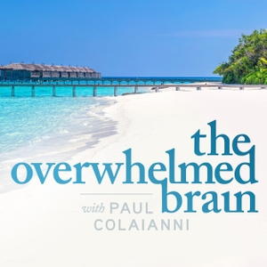 The Overwhelmed Brain | Stress | Anxiety | Relationship | Critical Thinking | Emotional Intelligence Like Tony Robbins Oprah by Personal growth and development, self-help show that helps you through the challenges of life like anxiety, depression, personal boundaries, stress and overwhelm. No affirmations needed, just practical advice.
