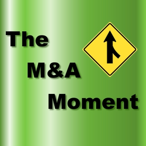 The M&A Moment by Donald Landwirth