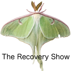 The Recovery Show » Finding serenity through 12 step recovery in Al-Anon – a podcast by The Recovery Show