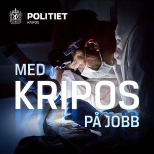 Med Kripos på jobb by Kripos