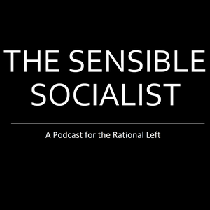 The Sensible Socialist by Kevin Gustafson