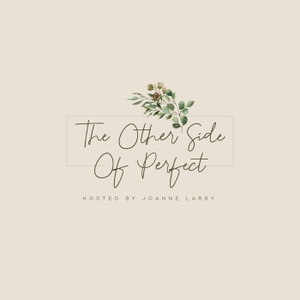 The Other Side Of Perfect by Joanne Larby