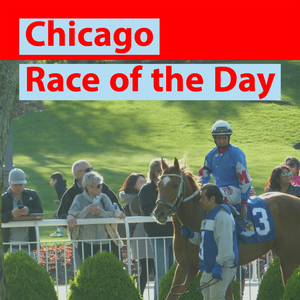 Chicago Race of the Day by Nicolle Neulist