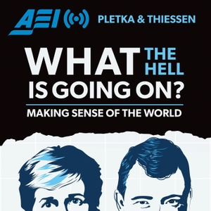 What the Hell Is Going On by American Enterprise Institute